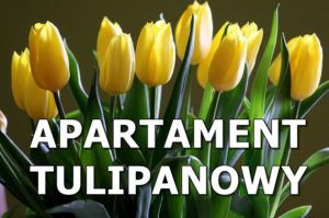APARTAMENT TULIPANOWY